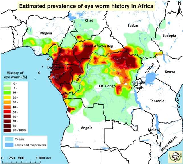 Estimate prevalence of eye worm history in Africa